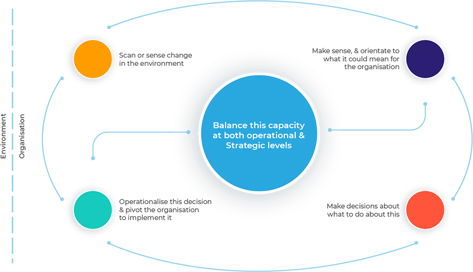 Scan change / make sense / decide on action / implement—balanced across operational and strategic levels